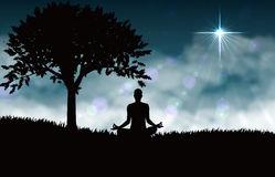 meditation-yoga-vector-diagram-grass-way-practice-can-make-people-more-healthy-49084080